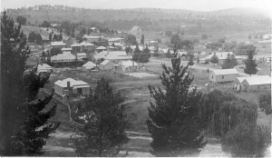 Walcha looking northeast 1920s